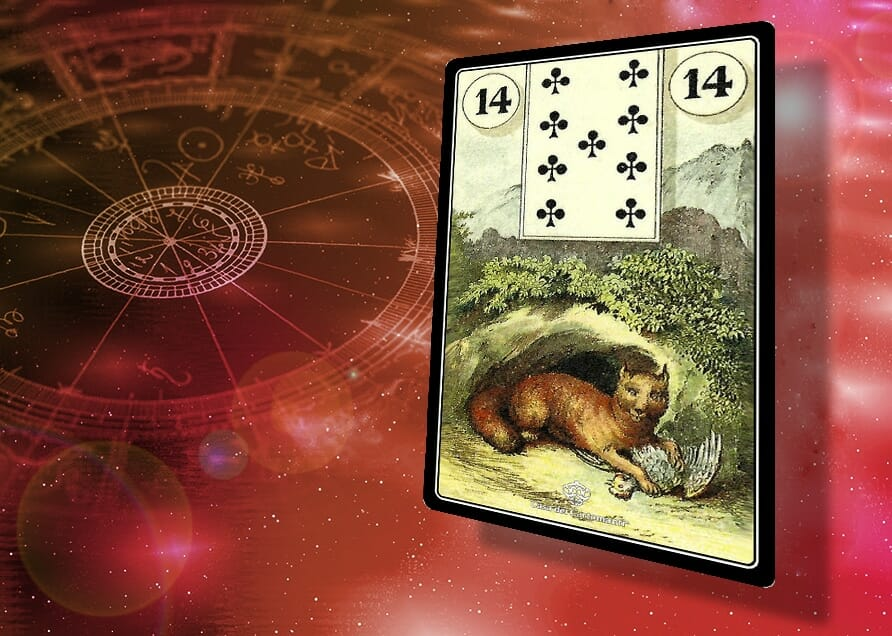 sibille lenormand 14: Volpe