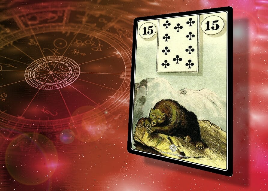 sibille lenormand 15: Orso
