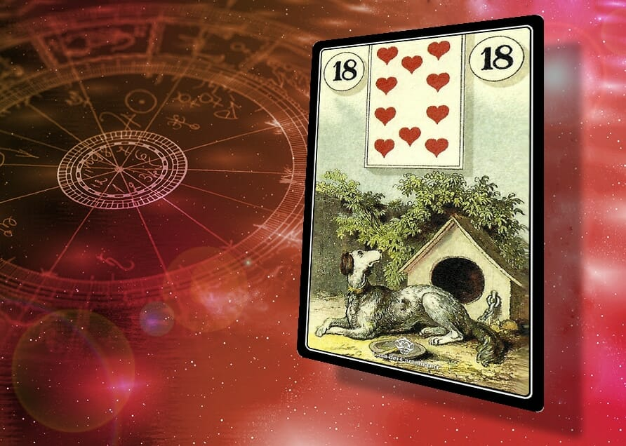 sibille lenormand 18: Cane